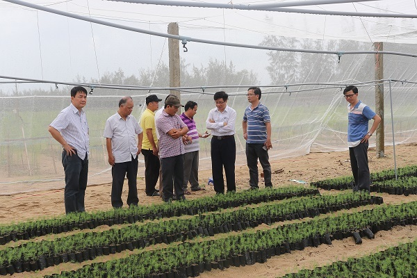 Nuclear technology applied in production, daily life in Vietnam
