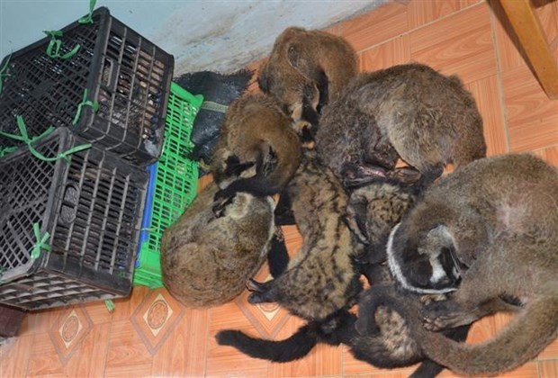 Vietnam vows to eliminate wildlife trade