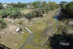Cần 30.000 tỷ cứu Đồng bằng sông Cửu Long trước thảm họa