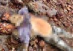 Thi thể nam giới đã phân hủy dạt vào bờ biển Quảng Bình