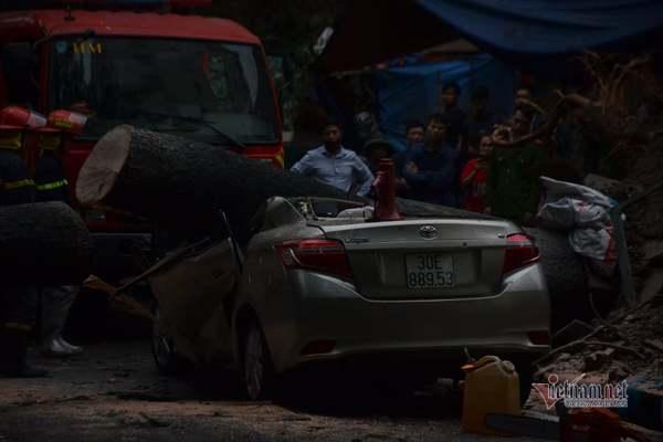 Mưa lớn quật đổ cây xanh, xế hộp bị đè bẹp rúm giữa Hà Nội
