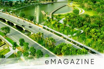 Những cây cầu đẹp như tranh trong lòng thành phố xanh Ecopark