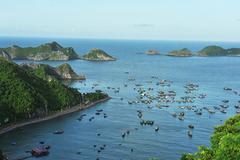 Vietnam tourism industry prepares post-epidemic plans