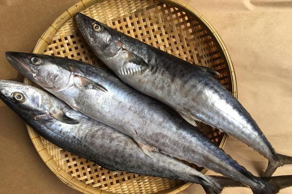 6 mẹo chọn cá biển cấp đông không hóa chất, tươi ngon như cá tươi