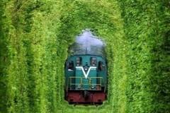 Vẻ đẹp mê hoặc suốt 4 mùa của Đường hầm tình yêu ở Ukraine