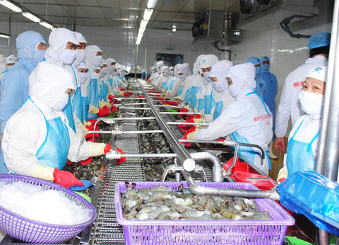 Shrimp exporters in Mekong Delta face challenges amid Covid-19 epidemic