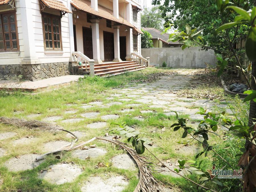 Biệt thự gỗ 1000 m2 lâu ngày để không, cỏ mọc, rêu bám đầy