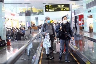 Another British passenger tests positive for coronavirus, the 31st case in Vietnam