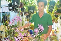 Chàng trai trồng 2.000 giò lan, có 20 loài lan giả hạc đột biến quý hiếm