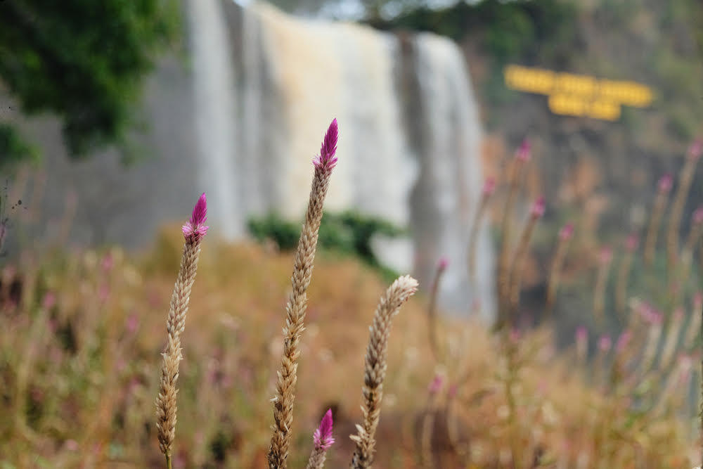 Phu Cuong Waterfall, a silk strip amidst the Gia Lai Mountains