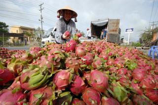 Vietnam seeks new markets for farm produce