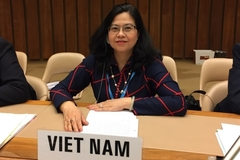 A talk with the first Vietnamese woman appointed WHO's division director