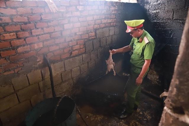 Tôm hùm hạ giá chỉ nhà giàu ăn, thịt lợn đắt Bộ trưởng khó chấp nhận