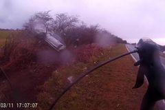 Tránh xe đạp, ô tô mất lái lao vào bụi cây