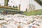 Gạo Việt thẳng tiến sang EU, bán được giá cao không ngờ
