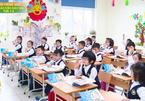 Do private schools in Vietnam need rescuing?