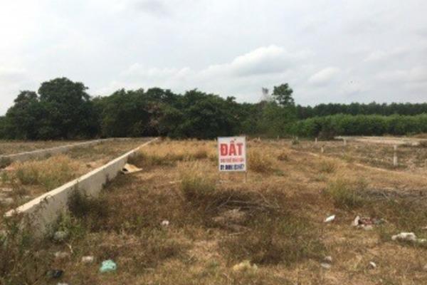Cầm 2 tỷ đồng trong tay có thể mua đất ở khu vực nào Hà Nội?