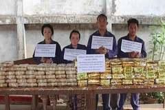 Công an Hà Tĩnh bắt nhóm người Lào vận chuyển 60kg ma túy