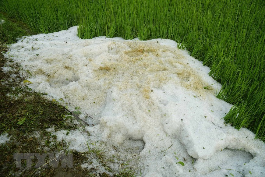 Hail causes damage in Dien Bien province