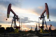 Ứng phó với cú lao dốc của giá dầu
