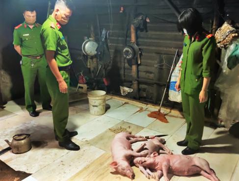 Mua lợn chết rồi quay bán cho khách