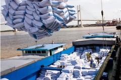 Bộ Công Thương lại đề xuất tiếp tục cho xuất khẩu gạo