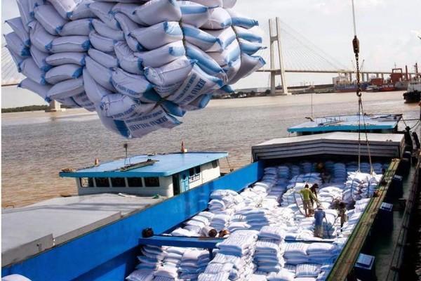 Bỗng nhiên mất tờ khai xuất khẩu gạo, Bộ xin 'bù đắp' cho doanh nghiệp