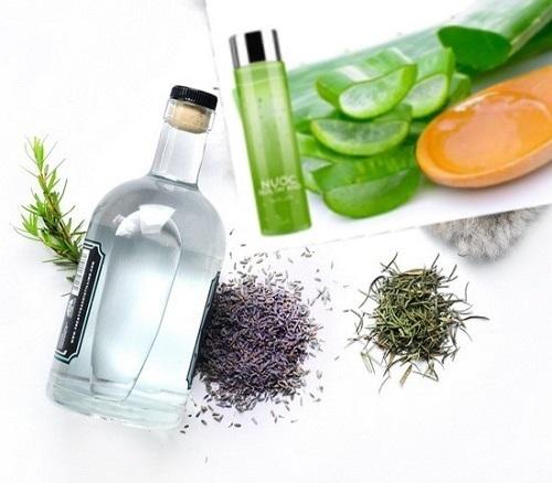 6 điều hữu ích phòng chống dịch bằng bài thuốc tự nhiên