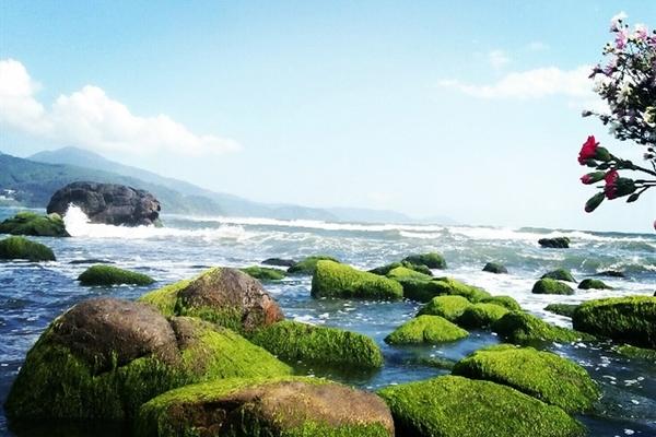 Promotions reviving Vietnam's tourism industry