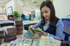 Fitch Solutions lowers Vietnam's growth forecast