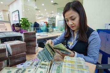 Foreign currency market eases following central bank's intervention