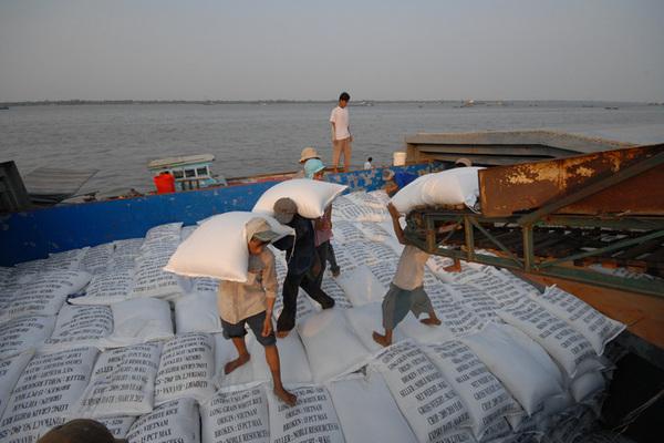 Farm produce sales fall, but rice exports soar