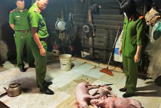Lợn chết thành lợn quay, tôm chết hóa tôm nõn thơm ngon