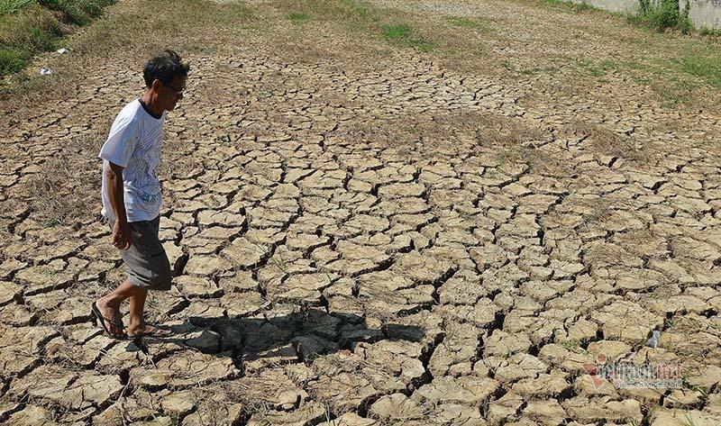 Bộ TT&TT hưởng ứng Ngày Nước, Ngày Khí tượng thế giới
