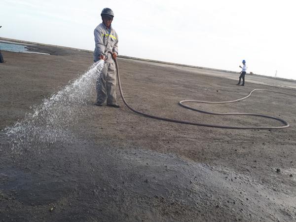 Nỗ lực bảo vệ môi trường ở các nhà máy của EVNGenco 1
