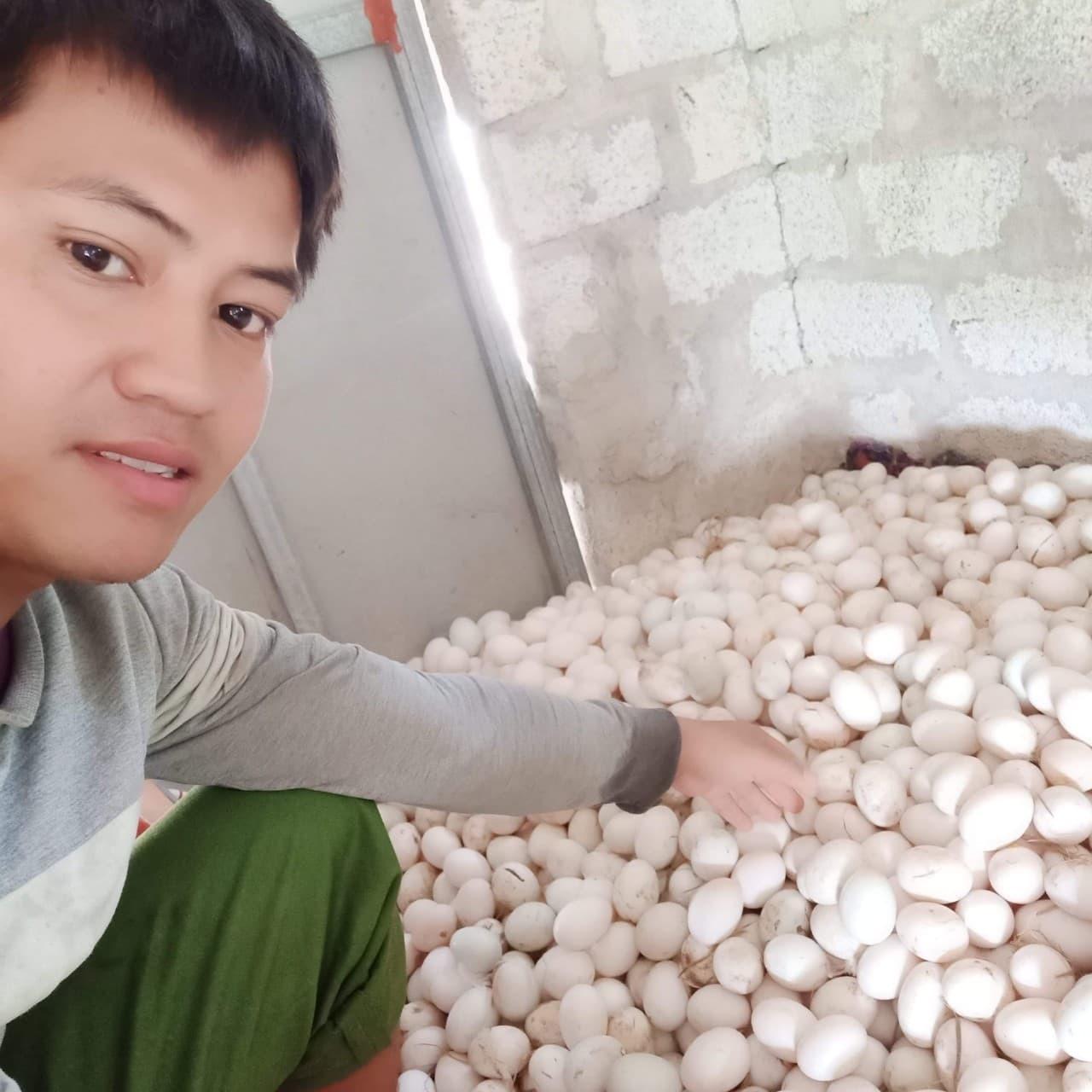 Chàng trai ủng hộ 1.000 quả trứng vịt cho khu cách ly