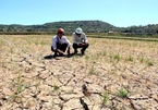 Central Vietnam faces water shortage for summer-autumn crop