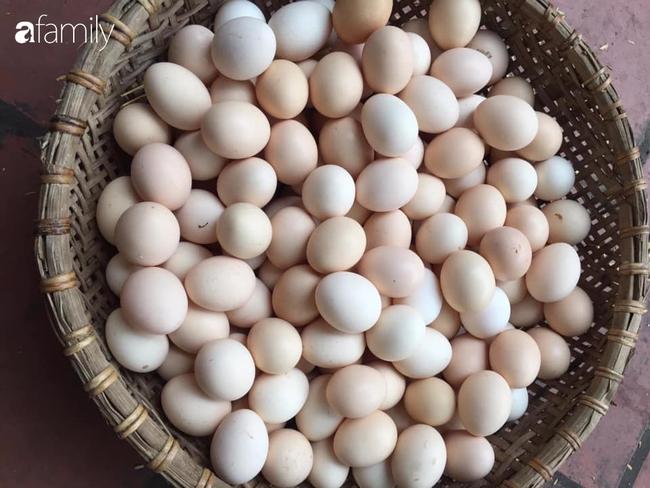 5 mẹo giúp chọn trứng gà ta, không nhầm với trứng gà công nghiệp