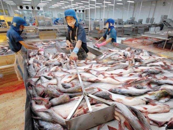 'Vua cá tra' Dương Ngọc Minh và 6 năm ngồi ghế lạnh nhà giam