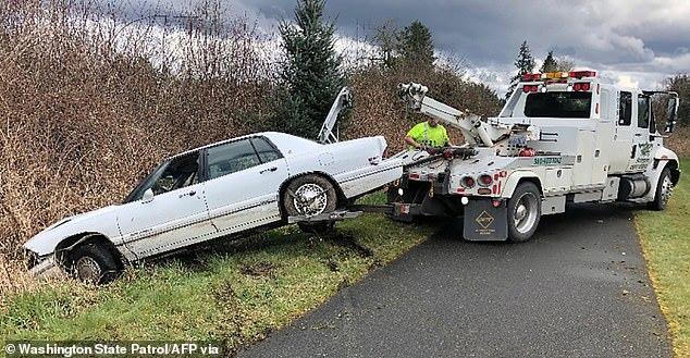 Dạy chó lái xe gây tai nạn bị bắt