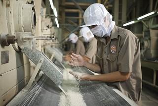 Lần thứ 3 đề xuất, Bộ Công Thương muốn xuất khẩu gạo nhưng kiểm soát chặt