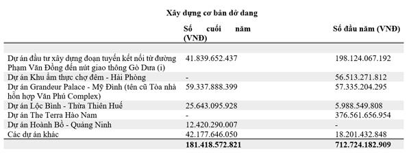 2019, doanh thu và lợi nhuận Văn Phú - Invest tăng mạnh