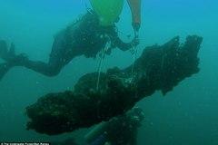 Khu rừng 60.000 năm tuổi được tìm thấy dưới đáy biển sâu