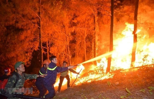 Forest fire warning in Ca Mau increased to highest level