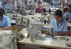 VN textile and garment shares lose appeal