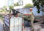 HCM City veteran wages war on garbage