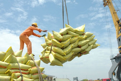 Who is allowed to export rice during the COVID-19 crisis?