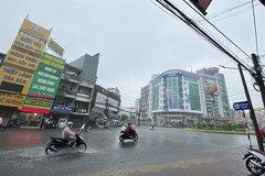 Heavy rains bring cheer to Mekong Delta farmers