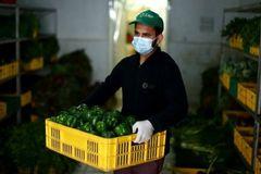 Coronavirus: Five ways the outbreak is hitting global food industry