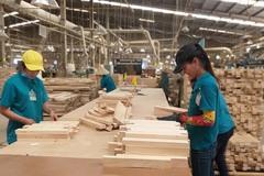 VPA/FLEGT 'mở đường', gỗ Việt thẳng tiến vào EU